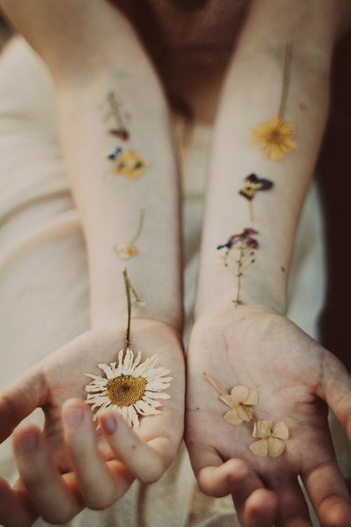dried-flowers-hands-editorial