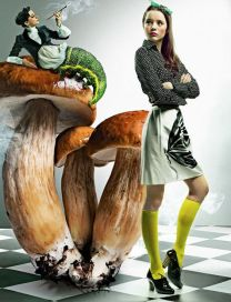 magic-mushrooms-alice-in-wonderland-editorial