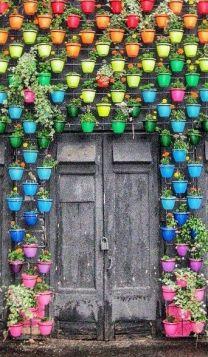 rainbow-garden-wall
