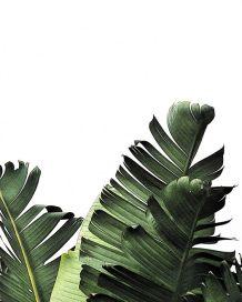 green-leafs-print