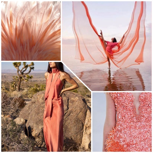coral-fashion-moodboard